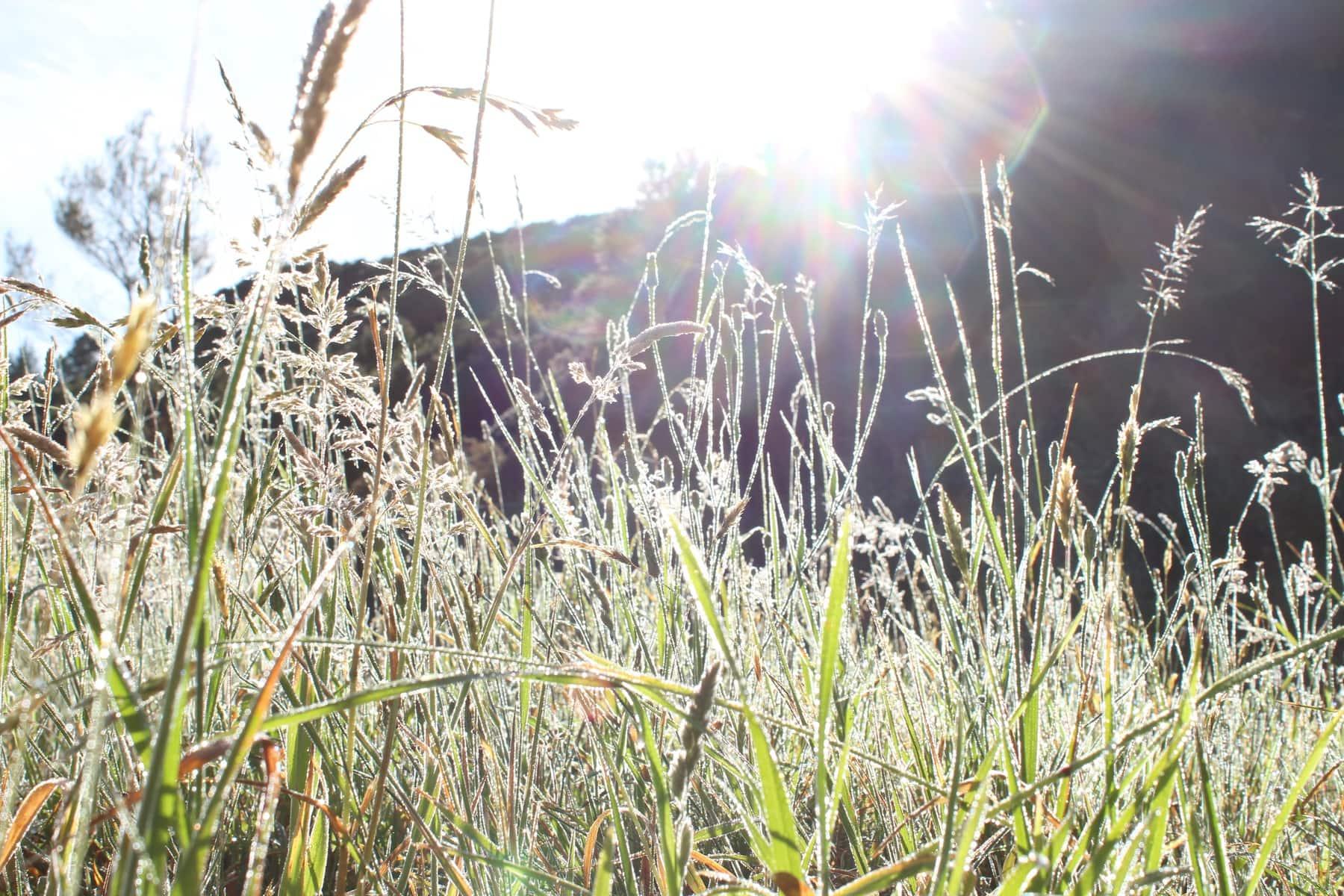 Magie Te Araroa Neuseeland Fernwanderung