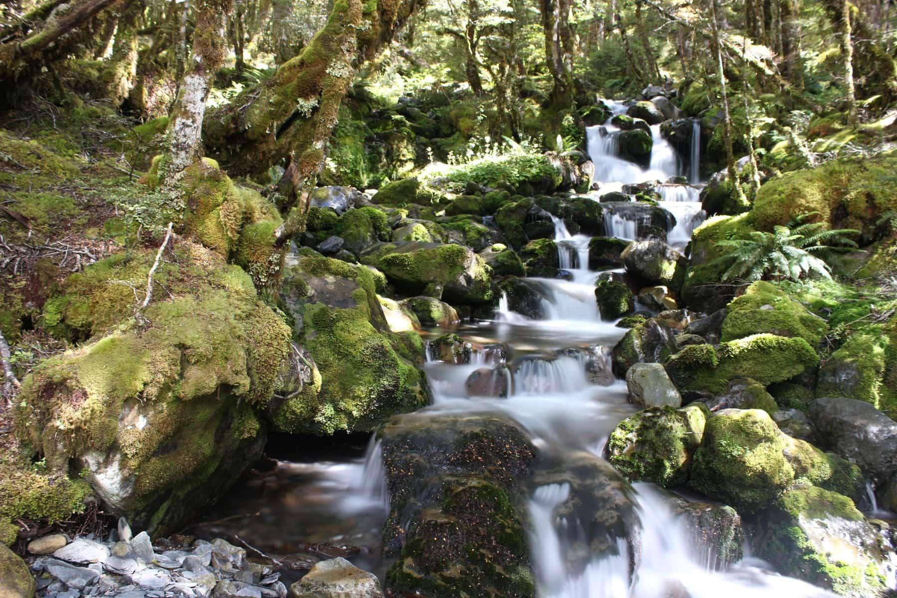 Wasserfall Te Araroa Neuseeland
