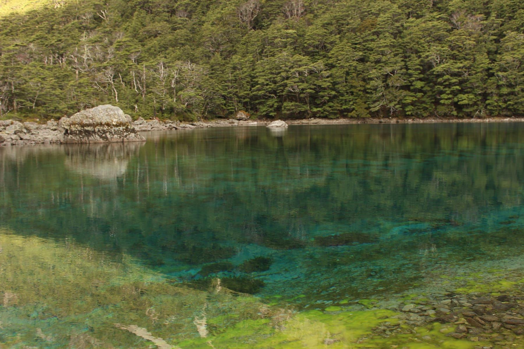 Blue Lake Te Araroa Neuseeland