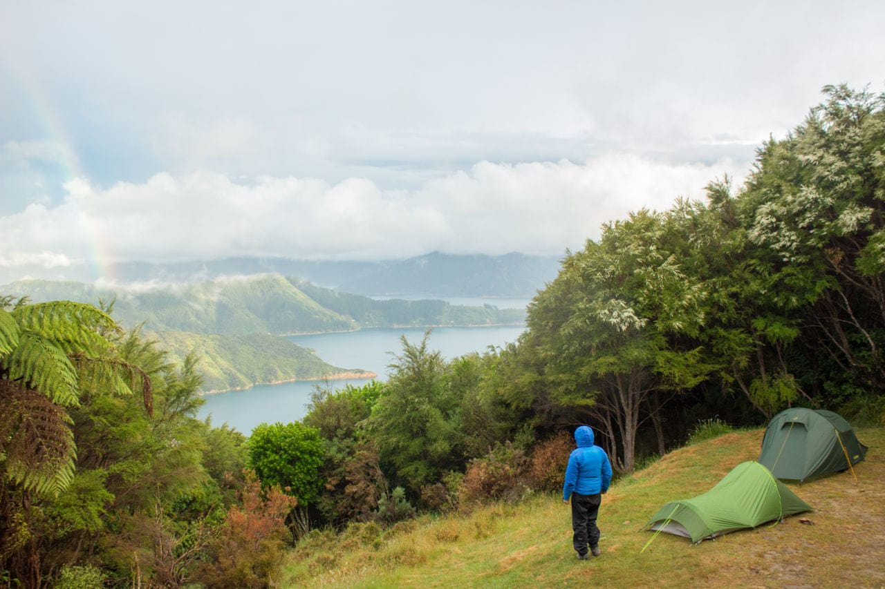 Wanderwege Neuseeland Queen Charlotte Track