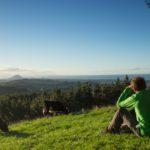 Ausblick auf Mount Maunganui Neuseeland