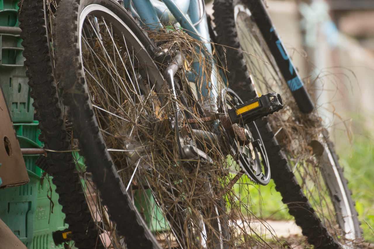 verrostete Fahrräder Neuseeland