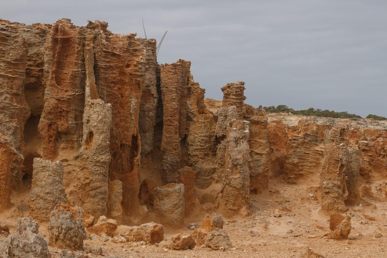 Versteinerter Wald Route Victoria Australien