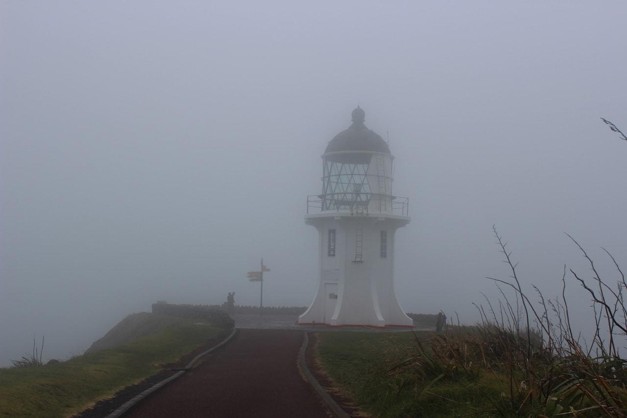 Cape Reinga Fotospots Neuseeland