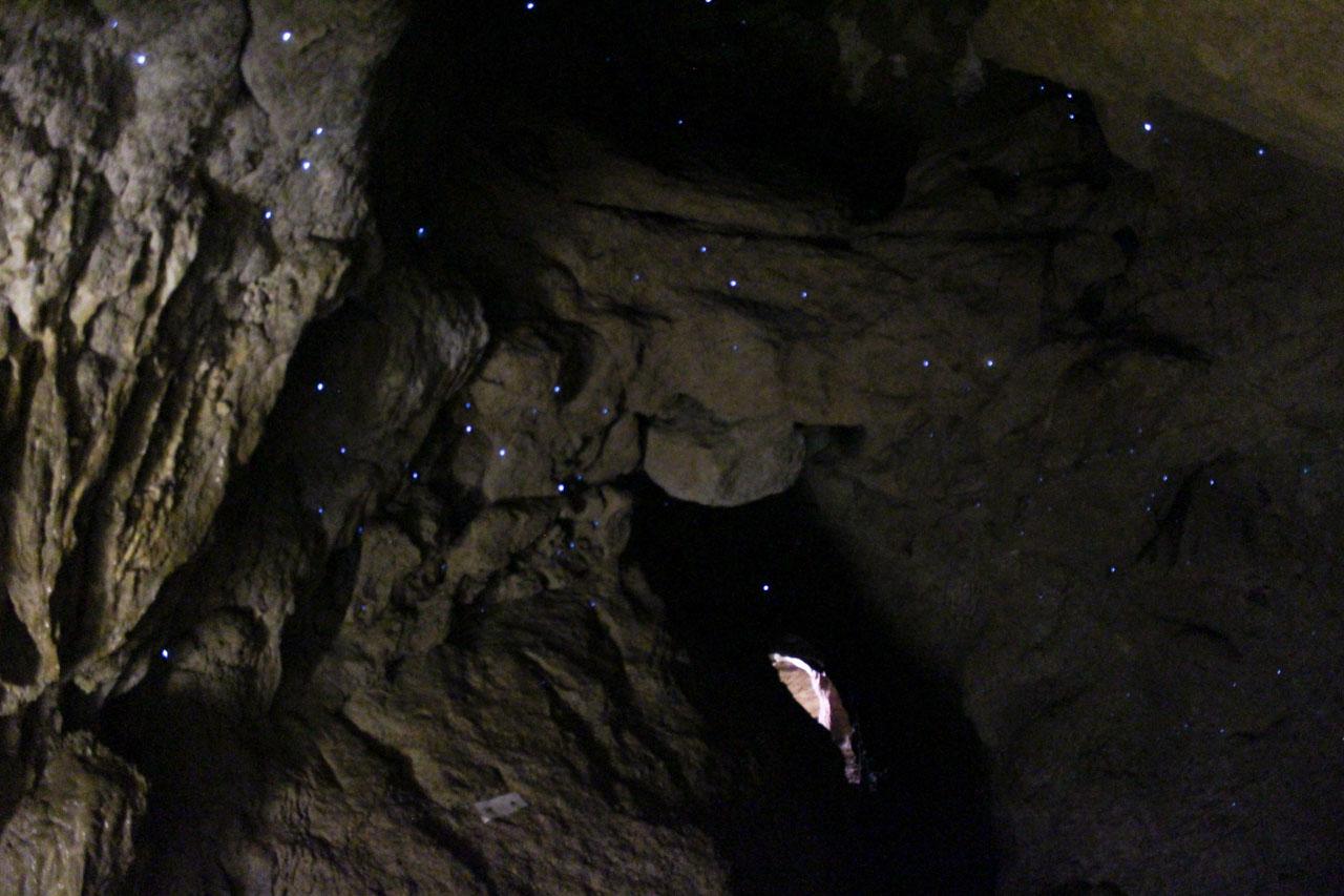 Clifden Cave Campingplatz Neuseeland