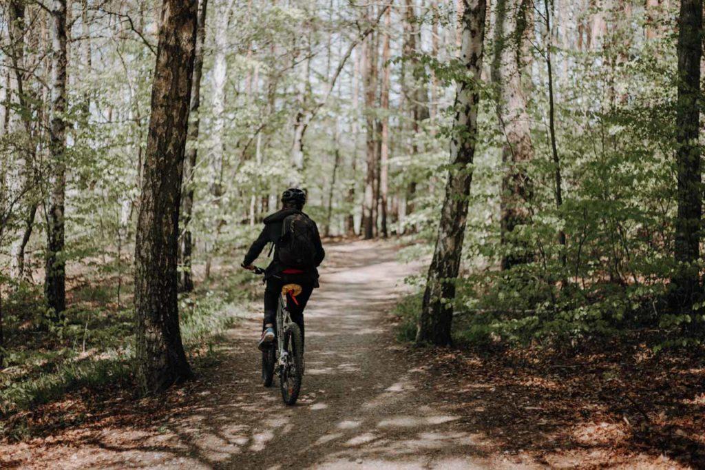 Fahrradfahren durch Müritz Nationalpark