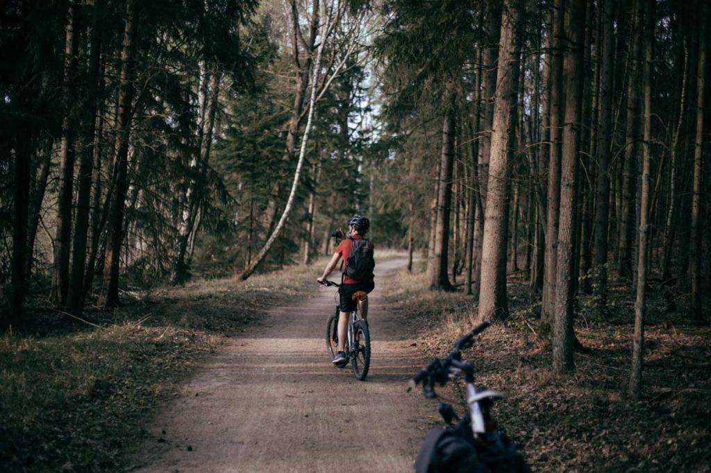 Müritz Radrundweg durch den Wald