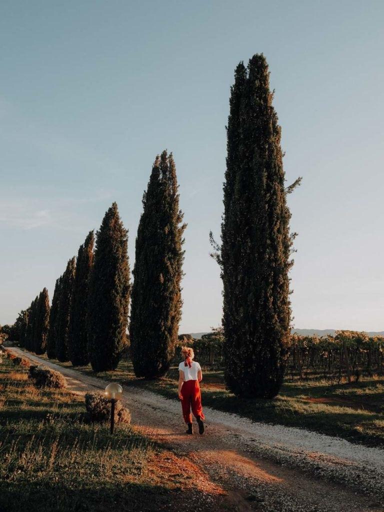 Spaziergang entlang der typischen Zypressen
