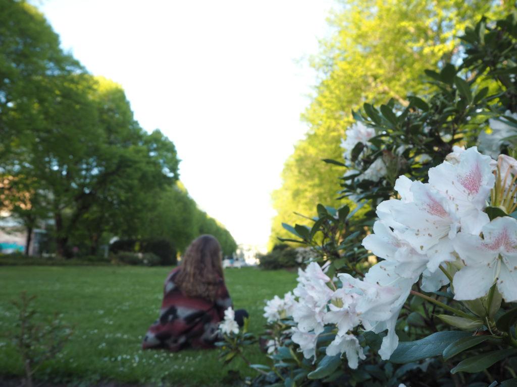 Im Rosengarten entspannen