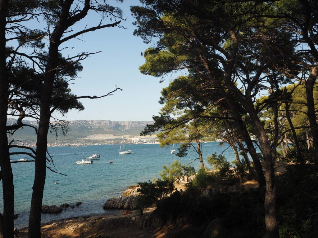 Blick durch die Bäume auf Segelboote